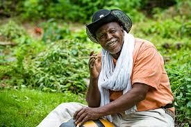 Malian Legendary Guitarist, Afel Bocoum Premieres New Single,Dakamana